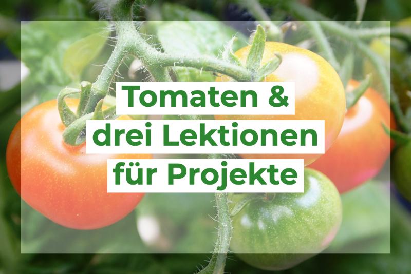 Tomaten können uns mehr über die Arbeit an Projekten beibringen, als man auf den ersten Blick denken würde.